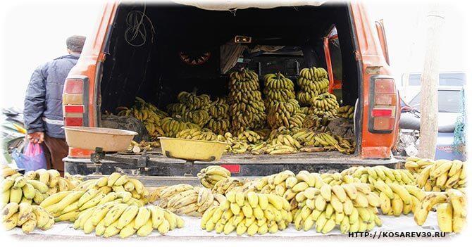 Вред немытых фруктов
