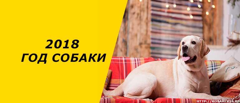 Гороскоп для года собаки