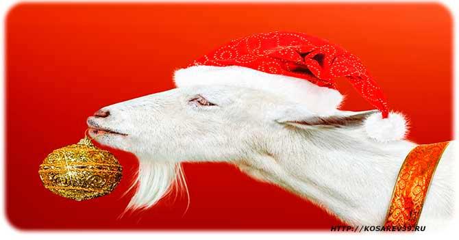 Гороскоп для года козы