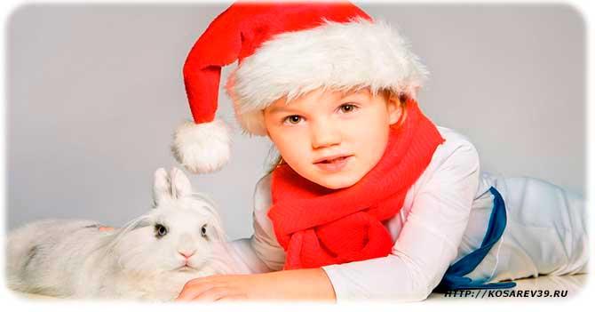 Гороскоп для года кролика