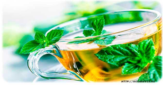 Полезные вещества в чае