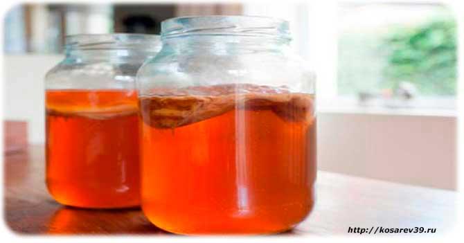 Применение чайного гриба