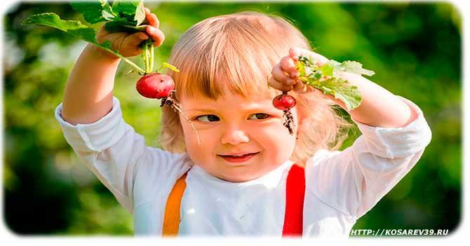 Польза редиски для детей