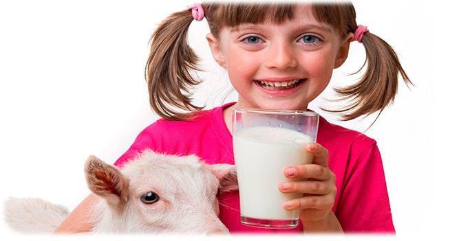 Польза козьего молока для детей