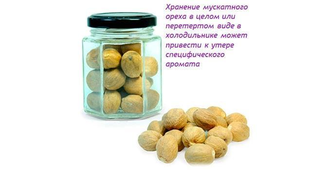 Как хранить мускатный орех