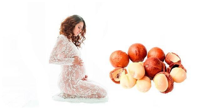Макадамия при беременности