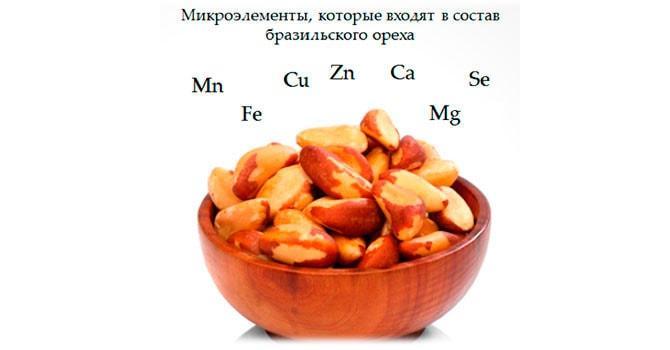 Микроэлементы бразильского ореха