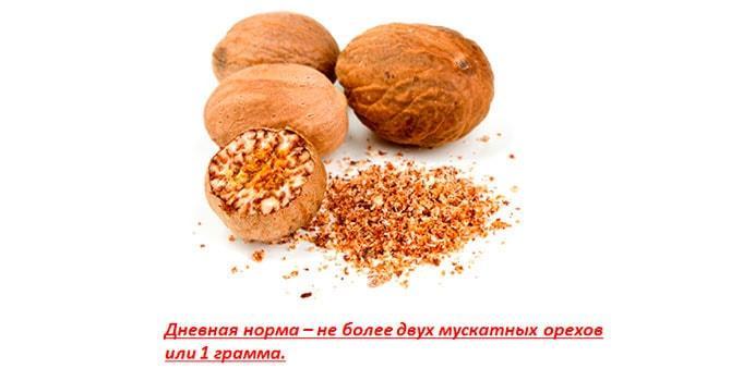 Норма употребления мускатного ореха