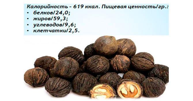 Пищевая ценность черного ореха