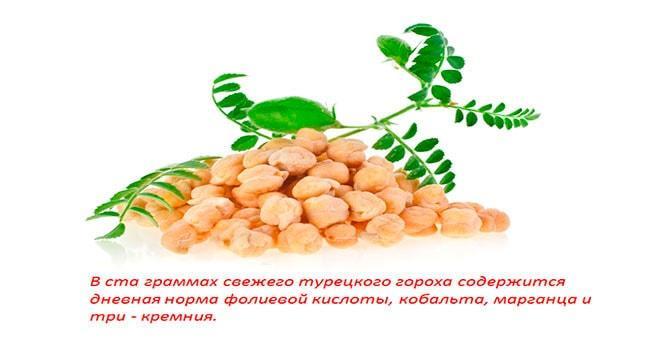 Витаминный состав турецкого ореха