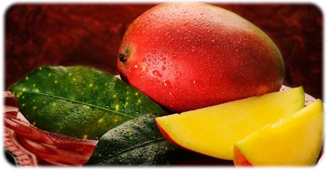 Польза плодов манго