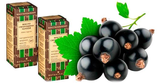 Вред масла черной смородины