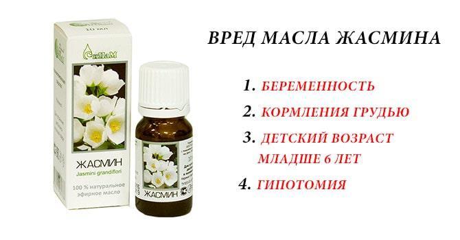Вредные свойства масла жасмина