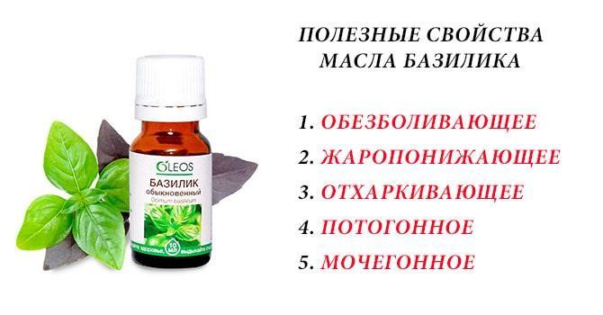 Полезные свойства масла базилика