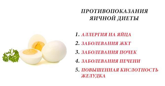 Противопоказания яичной диеты